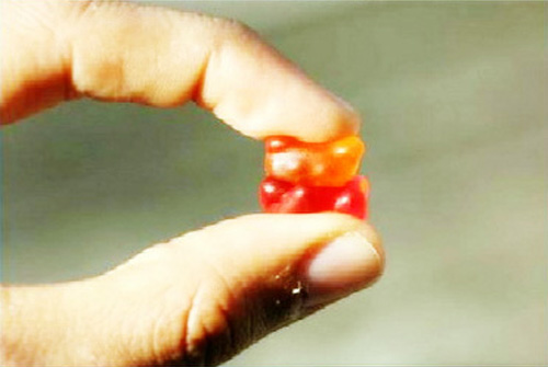 Gummi 013