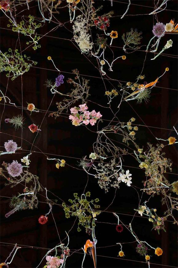 flowerlover-13