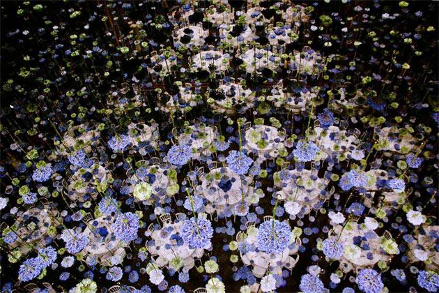 flowerlover-6